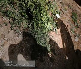 Cover_Una_voce_dalla_Siria